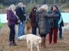 erster-d-treff-vom-27-oktober-2012-197