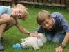 Drago mit Paul und Felix