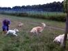 Dunja-Elly mit Emma unseren Hunden und Sunniva