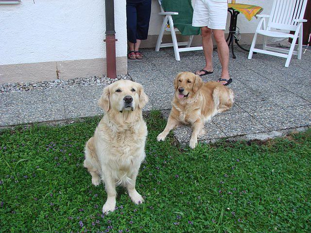 Hera und Arielle Ferienwohnung in Schwangau 23.07.2010