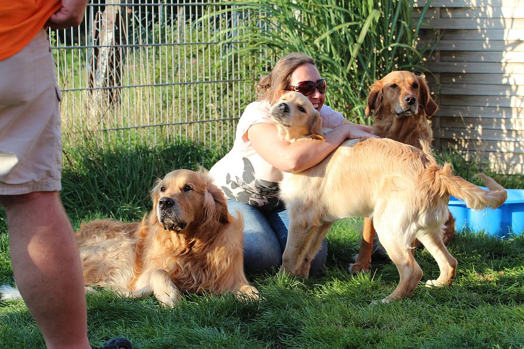 Ginger mit Eltern und der Züchterin