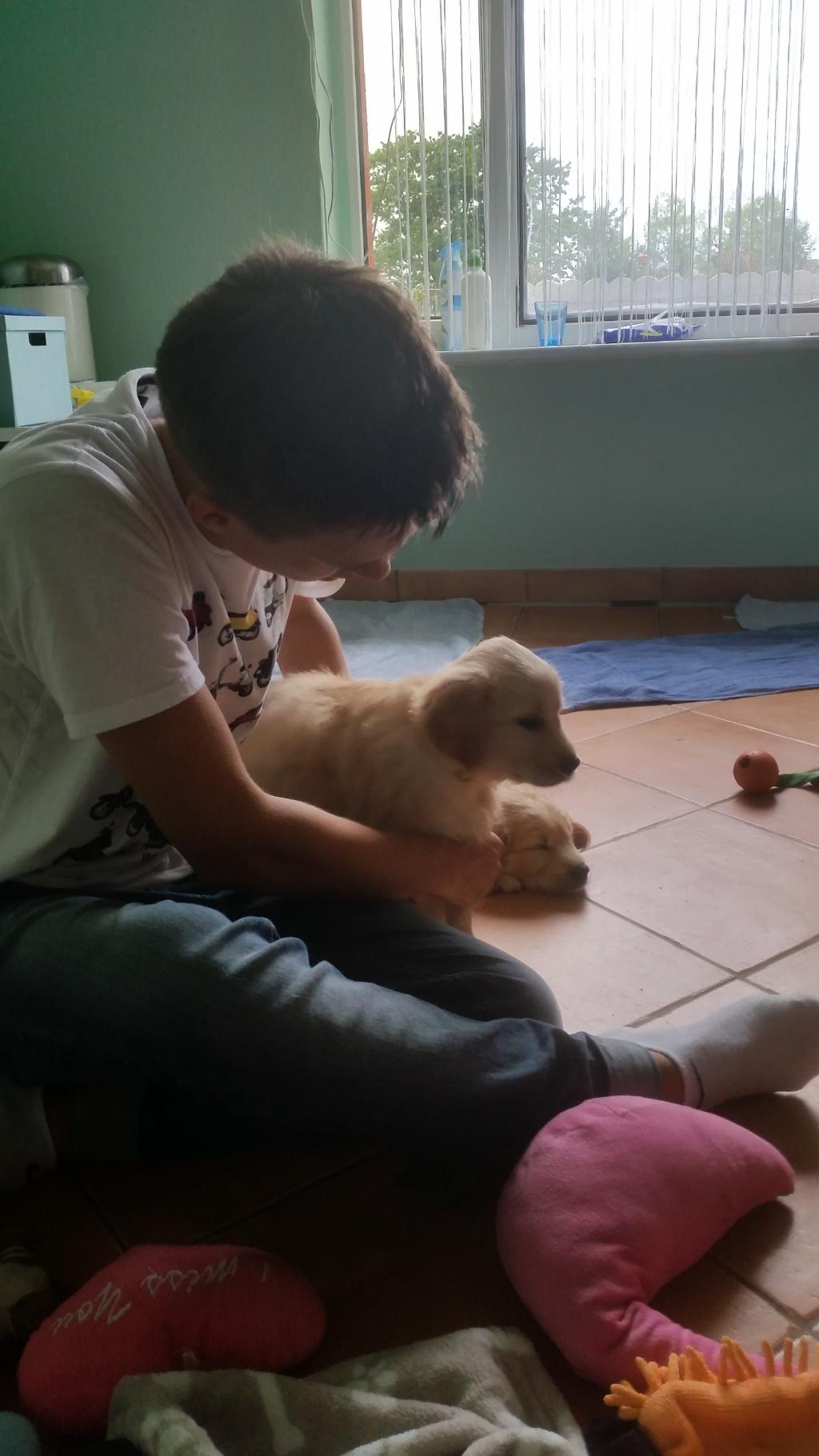 Basti mit seiner  Honey